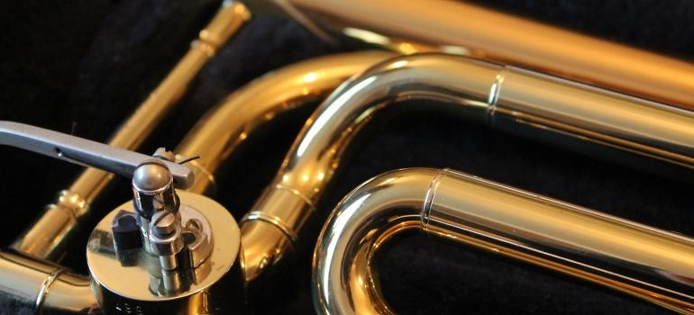 Trumpet in a hard case